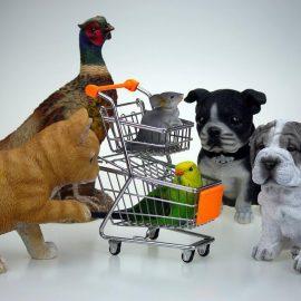 Aprire un negozio di animali