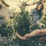 Aprire un'impresa di giardinaggio